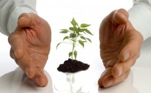 Как получить субсидию на развитие малого бизнеса