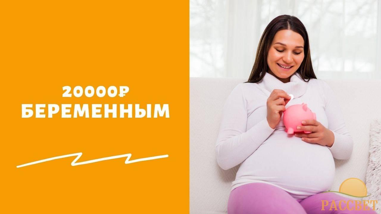 Когда будут платить по 20 тысяч рублей беременным в России в 2021 году