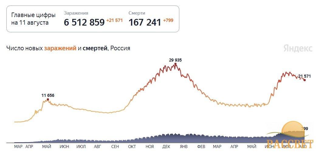 Статистика коронавируса в России на 11 августа 2021 года, сколько заболевших и смертей на сегодня