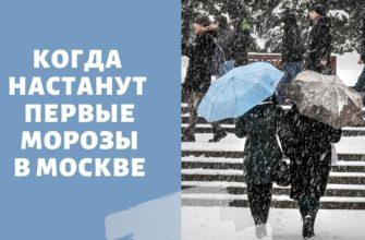 Снег и морозы в Москве